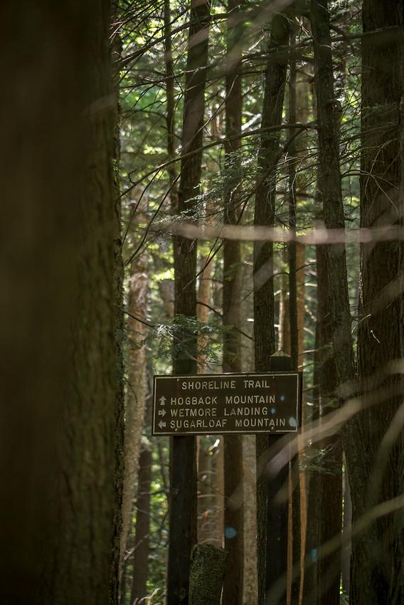 Hiking trails near Wetmore Landing beach area on Lake Superior near Marquette, Michigan.