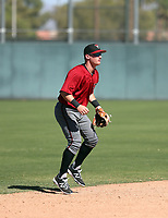 Camden Duzenack - 2017 AIL Diamondbacks (Bill Mitchell)