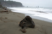 Driftwood with Waterfall and Sea Stacks at Third Beach, Third Beach, Olympic National Park, Washington, US