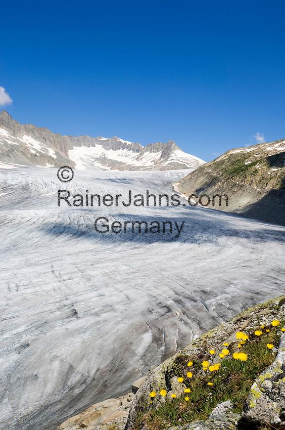 Switzerland, Canton Valais, Rhone Glacier with Gaerstenhoerner mountains above Furka Pass Road