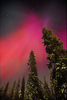 Aurora borealis or Northern Lights.