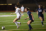 2015 girls soccer: St. Francis High School