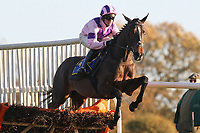 Lough Inch ridden by Richie McLernon in jumping action during the Hempton National Hunt Maiden Hurdle