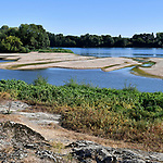 Les bords de Loire à Sainte Gemmes sur Loire (Port Thibault).