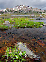 A lake in the Wind River Wilderness in Wyoming