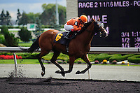 Bear's Tenor with jockey Justin Stein rides to victory  at Woodbine Race Course in Ontario, Canada on September 15, 2012.