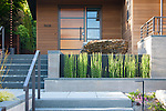 Steps lead past a garden bed and water feature to the front door of this contemporary home.