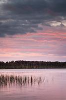 Pink sunset at Lake Mahinapua near Hokitika, West Coast, Westland, New Zealand