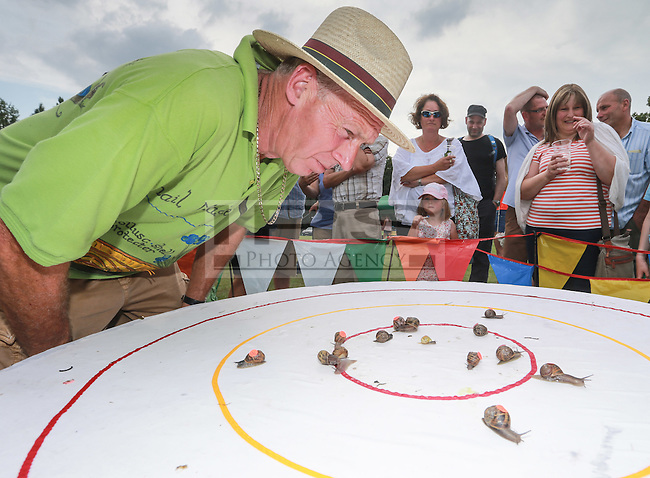 2014 World Championship Snail Racing in Congham (Norfolk)<br /> Picture description:<br /> Neil the Snail Master check for no foul play during the final... the finalist<br /> General infos:For more than 25 years the World Snail Racing Championships have been held at Congham, near King's Lynn, in Norfolk.Before snails can enter a race a sticker with a number must be put on so they can be identified. The snails race from the centre of a circle to the outside. The circle has a radius of 13 inches. The snails are put in the middle and pointed in the right direction.The  Snail Master Neil starts the races. He shouts: &quot;Ready, steady, SLOW!&quot; And off dash the snails! The Snail Master keeps the course well-watered as snails like damp conditions.Races are held on a table covered with a white cloth. Machine a circle, with braid in the middle, and then machine a similar circle 13 inches away.Owners do dress up. The World record stands at 2 minutes over the 13 inches. It was set up in 1995 by a snail called Archie. The record can only be challenged at the World Championships at Congham.Giant foreign snails are not allowedOften owners like to give their snails names like Speedy or Schumacher!<br /> Picture by Marcello Pozzetti &copy; IPS PHOTO AGENCY<br /> Cavell Barn<br /> The Common<br /> Swardeston<br /> Norwich<br /> Norfolk<br /> NR14 8DZ<br /> T 01508 571 480<br /> M 07973308835