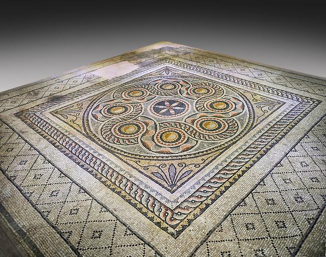 Roman mosaics - Geometric Mosaic. Dionysus Villa Ancient Zeugama, 2nd - 3rd century AD . Zeugma Mosaic Museum, Gaziantep, Turkey.