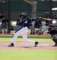 Cristian Heredia - 2017 AIL Padres (Bill Mitchell)