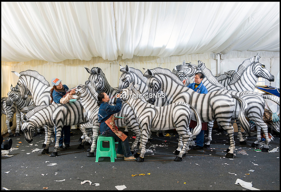 BNPS.co.uk (01202 558833)<br /> Pic: PhilYeomans/BNPS<br /> <br /> Skilled artists from Zigong put the finishing touches to a herd of Zebra.<br /> <br /> The largest Chinese 'Festival of Light' seen in Europe is taking shape at the Longleat House in Wiltshire - A small army of over 50 skillled workers have flown in from the remote village of Zigong in central China to create the stunning spectacle.<br /> <br /> Among the different scenes are a 20-metre tall Chinese temple, a 70-metre-long dragon, created using more than 10,000 porcelain cups, bowls, plates and dishes, and the mythical qilin – a chimerical hooved creature with the head of a lion – featuring more than 30,000 glass phials filled with coloured liquid.<br /> <br /> Massive traditional Chinese masks are also featured and there is also a bamboo forest which is home to a family of life-size pandas, giant elephants, zebras, lions and deer as well as giant lotus flowers floating on the lake.<br /> <br /> Filled with thousands of LED lights and handmade by a team of 50 highly-skilled craftsmen from Zigong in China's Sichuan province, the lanterns recreate a magical world of myths and legends.<br /> <br /> Set amid the beautiful backdrop of the landscaped grounds and gardens surrounding Longleat House, the lit structures also spill out on to Half Mile Lake to create a stunning and enchanting experience for visitors.<br /> <br /> It's the first time a festival of this size has taken place in the UK and the Chinese team behind the spectacular event believe its size and complexity make it unique throughout Europe.