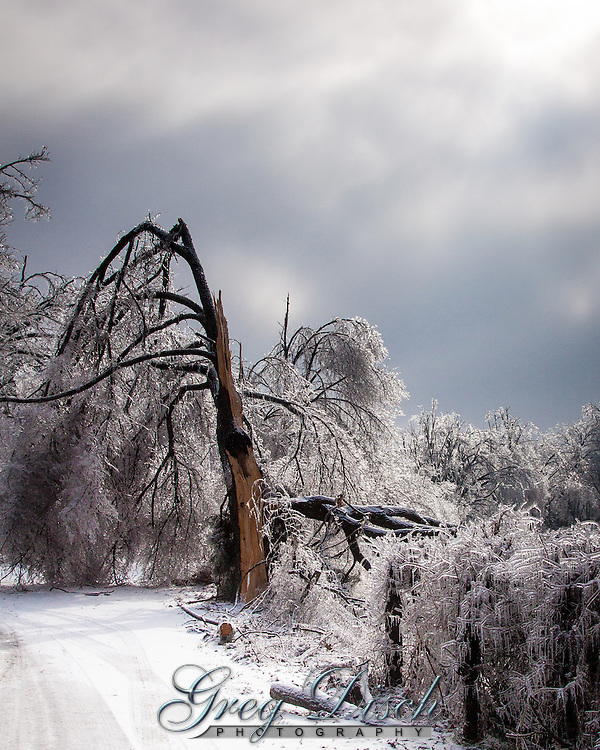 Arkansas Ice Storm 2009