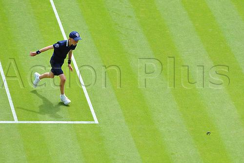 29.06.2015. Wimbledon, England. The Wimbledon Tennis Championships. Gentlemen's Singles first round matchOiseau sur centre court