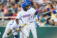 Florida Gators third baseman Josh Tobias (11) heads back to the dugout after scoring against the Miami Hurricanes in the NCAA College World Series on June 13, 2015 at TD Ameritrade Park in Omaha, Nebraska. Florida defeated Miami 15-3. (Andrew Woolley/Four Seam Images)