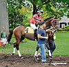 Tweet Sense at Delaware Park on 9/3/14