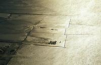 Deutschland, Nordsee, Wattenmeer, Bune, Hochwasserschutz, Landgewinnung, Wasser