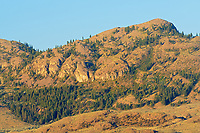 Mountains surrounding Osoyoos Lake in the Okanagan Valley.  Antelope brush and shrub-steppe ecosystem. Columbia Mountains, Osoyoos, British Columbia, Canada