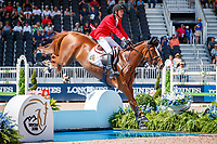 BEL-Jos VErlooy rides Igor during the Second Competition - Round 1. FEI World Team and Individual Jumping Championship. 2018 FEI World Equestrian Games Tryon. Thursday 20 September. Copyright Photo: Libby Law Photography