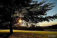 Image Ref: T047<br /> Location: Macclesfield<br /> Date: 6th April 2014