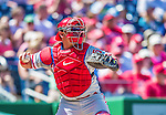 7 September 2014: Philadelphia Phillies catcher Carlos Ruiz in action against the Washington Nationals at Nationals Park in Washington, DC. The Phillies fell to the Nationals 3-2 in their final meeting of the season. Mandatory Credit: Ed Wolfstein Photo *** RAW (NEF) Image File Available ***