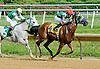 DC Royale Tigre winning at Delaware Park on 8/20/12