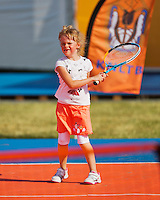 17-06-13, Netherlands, Rosmalen,  Autotron, Tennis, Topshelf Open 2013, KNLTB Plaza<br /> Photo: Henk Koster