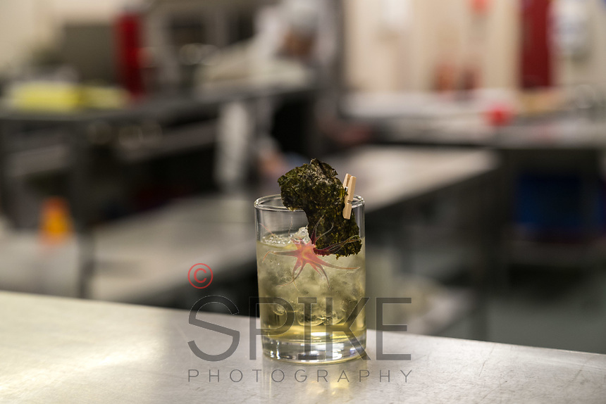A Seaweed Sour cocktail