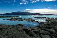 From the oldest in the east to the youngest in the west, the 13 major islands and over 100 smaller islets and rocks of the archipelago are scattered over 320 km and moving southeast with the shifting oceanic plates at a rate of 4 cm a year. Fernandina is the youngest and most inhospitable of all the Galápagos Islands. .