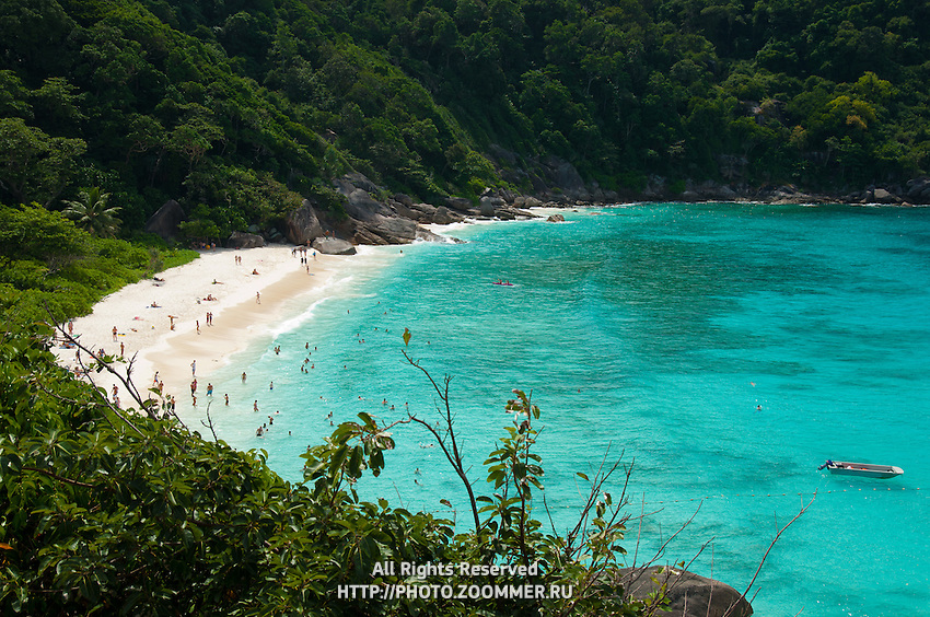 Beach and the bay of Similan island #8 with azure blue Indian ocean