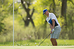 19 MAY 2016: Griffin Brown of Limestone College hits a chip shot during the 2016 Division II Men's Individual Golf Championship held at Green Valley Ranch Golf Club in Denver, CO. Justin Tafoya/NCAA Photos