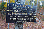 "Vandalism to the Ethan Pond Trail (Appalachian Trail) sign in the New Hampshire White Mountains. A hiker has scratched out ""Ethan Pond"" and carved the Appalachian trail symbol into the sign."
