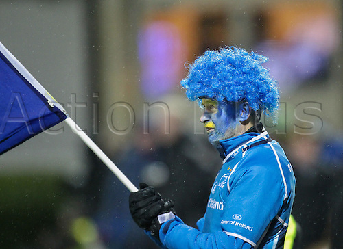 01.01.2016. RDS Arena, Dublin, Ireland. Guinness Pro 12 Leinster versus Connacht. Leinster fan showing his support in fancy dress