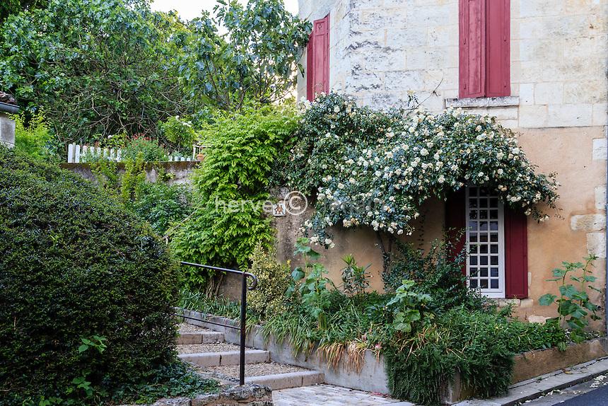 France, Charente (16), Aubeterre-sur-Dronne, labelisé Les Plus Beaux Villages de France, une ruelle en escalier