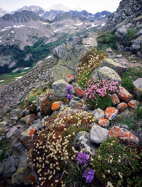 Avalanche Pass, Snowmass Peak, Maroon Bells - Snowmass Wilderness