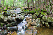 Cascade on Pollard Brook in Lincoln, New Hampshire during the summer months.