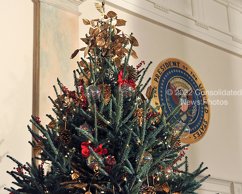 Washington, DC - December 2, 2009 -- Top of one of the Christmas trees on either side of the door leading to the Blue Room from the Cross Hall of the White House in Washington, D.C. on Wednesday, December 2, 2009..Credit: Ron Sachs / CNP.(RESTRICTION: NO New York or New Jersey Newspapers or newspapers within a 75 mile radius of New York City)
