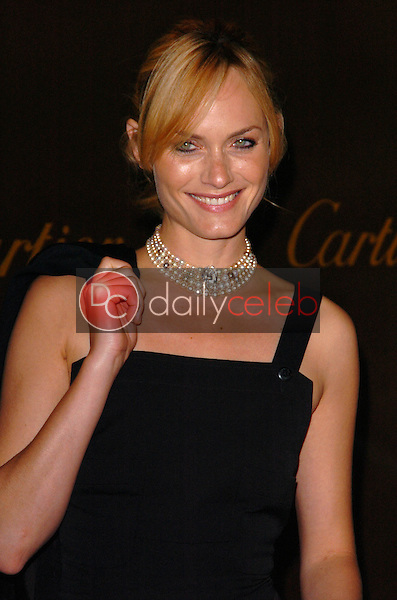 Amber Valletta<br />