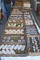 On a street market. Cheese. Goat, many types and shapes. Bordeaux city, Aquitaine, Gironde, France