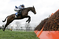 Thehillofuisneach ridden by AP McCoy jumps the last and goes on to win the Betfred When Both Teams Score Handicap Hurdle at Huntingdon Racecourse, Brampton, Cambridgeshire