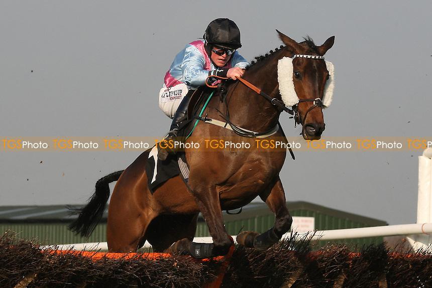 Belle De Fontenay ridden by Trevor Whelan jumps the last in the Follow Plumpton Racecourse On Facebook Mares Handicap Hurdle - Horse Racing at Plumpton Racecourse, East Sussex - 12/03/12 - MANDATORY CREDIT: Gavin Ellis/TGSPHOTO - Self billing applies where appropriate - 0845 094 6026 - contact@tgsphoto.co.uk - NO UNPAID USE.