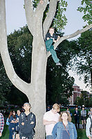 """A boy sits in a tree as entrepreneur and Democratic presidential candidate Andrew Yang speaks at a campaign rally in Cambridge Common near Harvard Square in Cambridge, Massachusetts, on Mon., September 16, 2019. Yang's unlikely presidential bid is centered on his idea for a """"Freedom dividend,"""" which would give USD$1000 per month to every adult in the United States. After appearing in three Democratic party debates, Yang has risen in polls from longshot candidate to within the top 10."""