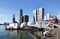 Nederland - Rotterdam -  2019. De Rijnhaven. Hoogbouw op de Wilhelminapier. Op de voorgrond het Drijvend Paviljoen.    Foto Berlinda van Dam / Hollandse Hoogte