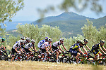 The peloton in action during Stage 19 of the 104th edition of the Tour de France 2017, running 222.5km from Embrun to Salon-de-Provence, France. 21st July 2017.<br /> Picture: ASO/Pauline Ballet | Cyclefile<br /> <br /> <br /> All photos usage must carry mandatory copyright credit (&copy; Cyclefile | ASO/Pauline Ballet)