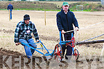 Competing at the National Ploughing Championship in the senior horse category on Wednesday was father and son team Stephen and Brendan Glavin from Abbeydorney