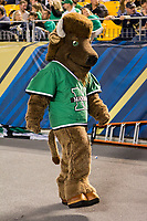 Marshall Thundering Herd mascot. The Pitt Panthers defeated the Marshall Thundering Herd 43-27 on October 1, 2016 at Heinz Field in Pittsburgh, Pennsylvania.