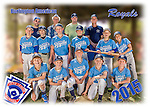 2015 Burlington American Royals