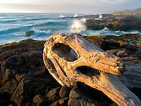 Driftwood and crashing waves at Smelt Sands State Park, Oregon