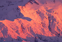 Pink Alpenglow On Pioneer Ridge Of Mt. Denali, Denali National Park, Alaska