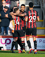 Ryan Fraser of AFC Bournemouth and Dominic Solanke of AFC Bournemouth celebrate the goal scored by Joshua King of AFC Bournemouth middle during AFC Bournemouth vs Wolverhampton Wanderers, Premier League Football at the Vitality Stadium on 23rd February 2019